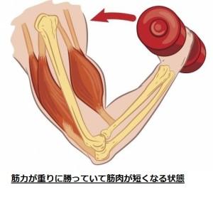 筋肉のつけ方⑤