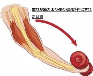 筋肉のつけ方⑥