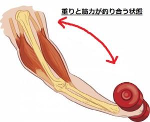 筋肉のつけ方⑦