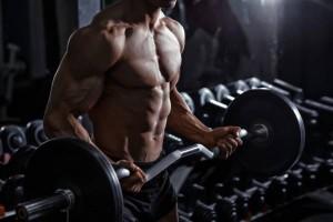 筋肉のつけ方
